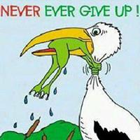 Never / Ever