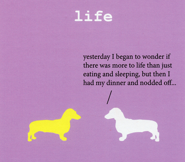 dogs-life